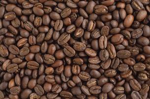 コーヒー豆の写真素材 [FYI00416516]