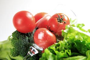Tomatoの写真素材 [FYI00416736]