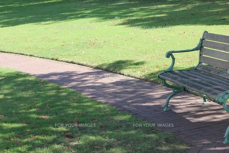 芝生の中のベンチの写真素材 [FYI00417000]