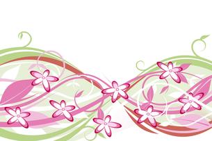 花 (flower pink and green)の写真素材 [FYI00417022]