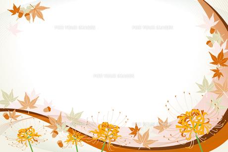 花 (flower : spider lily and acorn and maple)の写真素材 [FYI00417034]