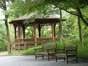 木のベンチと家の写真素材 [FYI00417249]