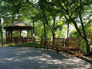 新緑のベンチと屋形の写真素材 [FYI00417677]