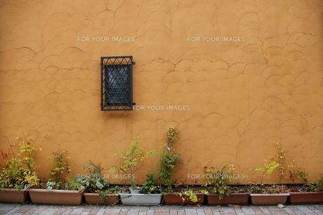 お洒落な壁の写真素材 [FYI00417754]