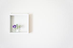 花の額縁の写真素材 [FYI00417798]