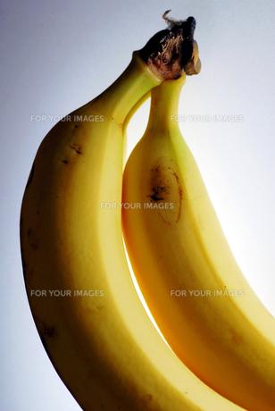 バナナの写真素材 [FYI00417998]