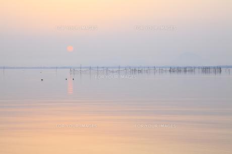 三津浜、春の夜明けの素材 [FYI00418098]