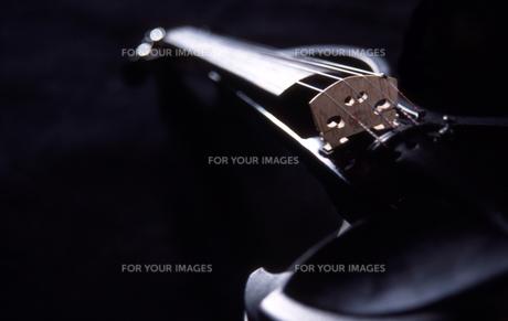 Silent violinの写真素材 [FYI00418305]