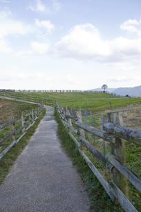 農場の写真素材 [FYI00418329]