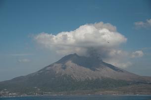 桜島の写真素材 [FYI00418339]