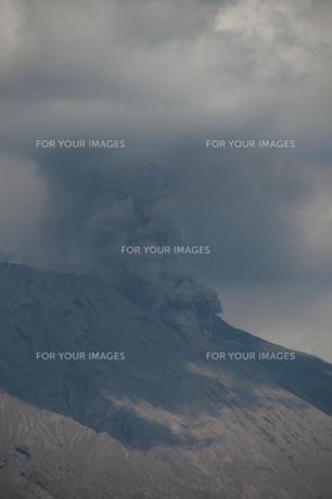 桜島 噴火の素材 [FYI00418348]