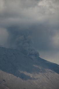 桜島 噴火の写真素材 [FYI00418348]