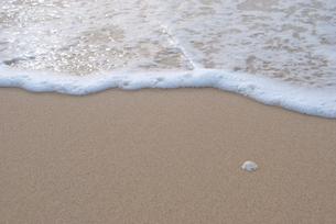 海の写真素材 [FYI00418359]