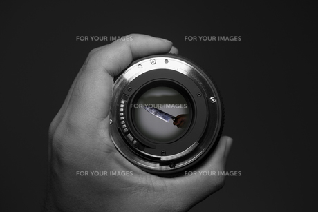 Through the Lensの写真素材 [FYI00418378]