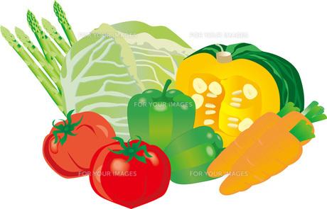 野菜の素材 [FYI00418545]