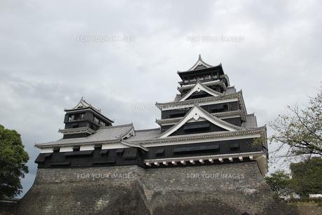 熊本城の写真素材 [FYI00418935]