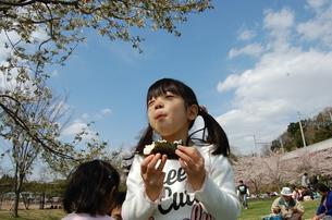 花見でおにぎりをおいしそうに頬張る少女の写真素材 [FYI00419067]