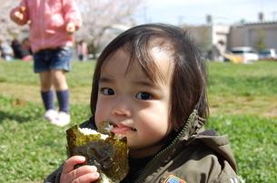 おにぎりを食べる1歳児の写真素材 [FYI00419102]