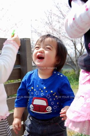 姉と遊び笑顔の弟の写真素材 [FYI00419135]