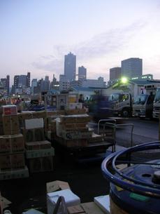 築地市場の写真素材 [FYI00419306]