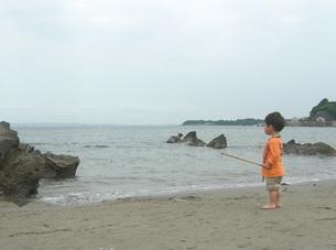 海を見るの写真素材 [FYI00419339]
