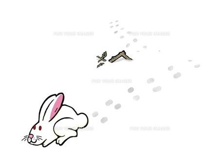 雪うさぎ横の写真素材 [FYI00419340]