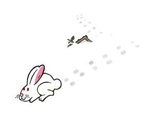 雪うさぎ横の素材 [FYI00419340]