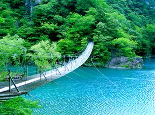 吊り橋の素材 [FYI00419364]