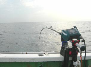 釣りの素材 [FYI00419374]