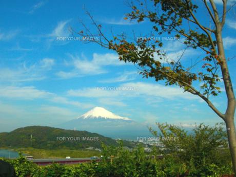 富士山の素材 [FYI00419382]