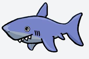 サメの素材 [FYI00419383]