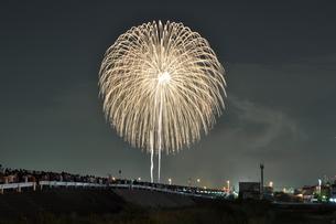 なにわ淀川花火大会の写真素材 [FYI00419478]