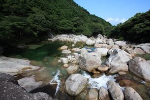 屋久島 横河渓谷の清流の写真素材 [FYI00419650]