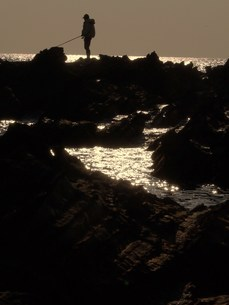 釣り人の写真素材 [FYI00420291]