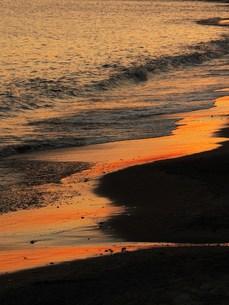 光る砂浜の写真素材 [FYI00420292]