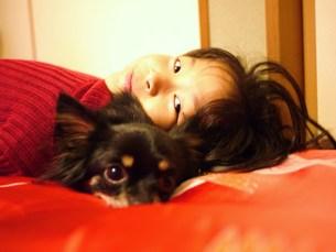 愛犬との写真素材 [FYI00420374]