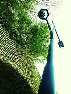 街燈の写真素材 [FYI00420379]