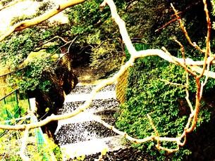 流れのない川の写真素材 [FYI00420380]