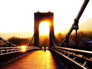 秦野戸川公園(風の吊り橋)の写真素材 [FYI00420395]