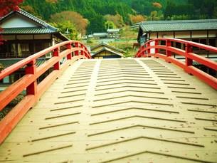 紅葉と赤い橋の写真素材 [FYI00420406]