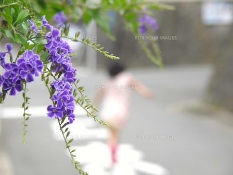 駆け抜ける少女の写真素材 [FYI00420432]