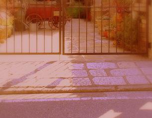 フェンス越しの庭の写真素材 [FYI00420447]