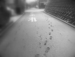 雪と足跡の写真素材 [FYI00420469]