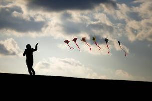 凧揚げをする女性の写真素材 [FYI00420602]