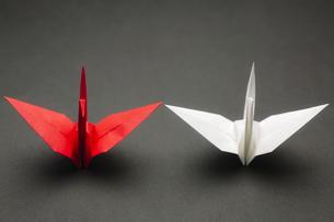 紅白の折り鶴の写真素材 [FYI00420604]