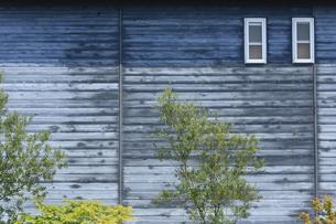 壁と小窓と植木の写真素材 [FYI00420645]