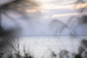 水平線の写真素材 [FYI00420671]