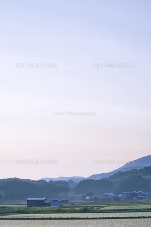 日の出前の村の素材 [FYI00420686]