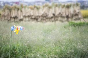 鳥除けの風車の写真素材 [FYI00420725]