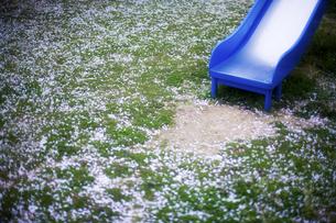 滑り台とさくらの花びらの写真素材 [FYI00420765]
